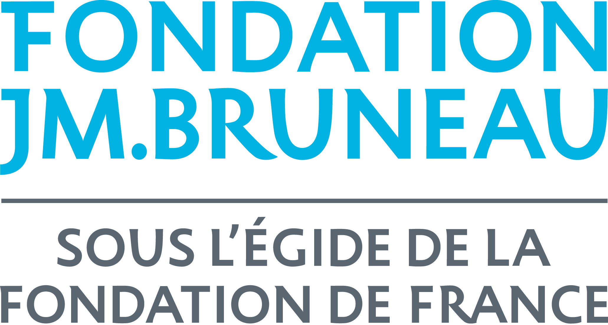 logo-fondation-bruneau.png